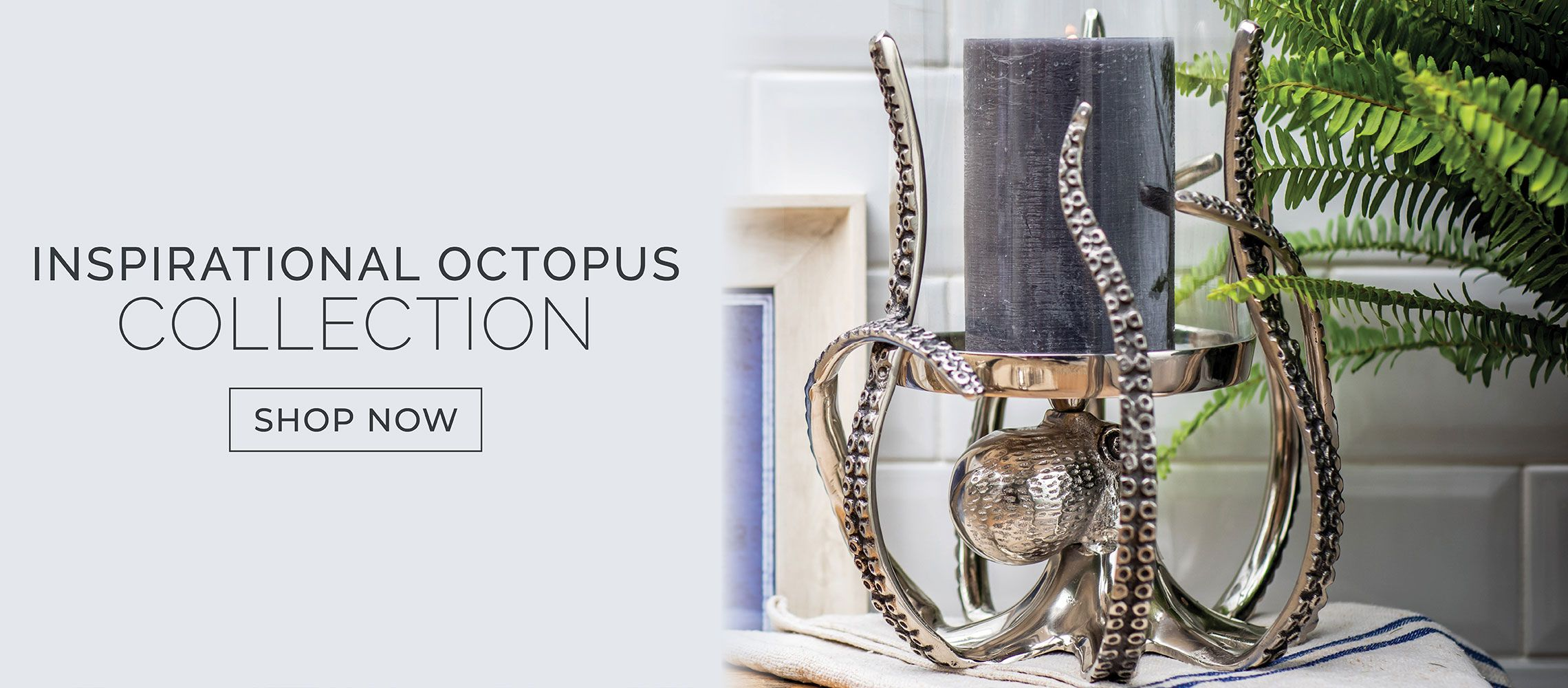 Octopus Collection