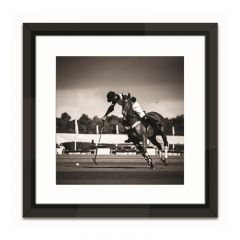 Polo III Framed Art Print