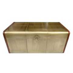 NEW! Aviator Brass Trunk