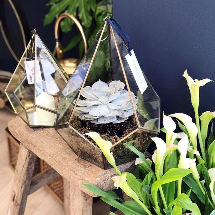 Visit Us At RHS Chelsea Flower Show 2017